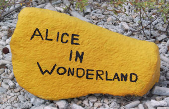 alice in wonderland bonaire